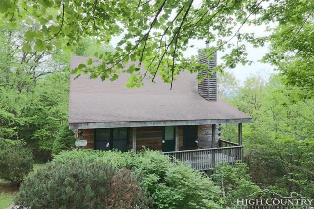 215 Hawks Bill, Banner Elk, NC 28604 (MLS #207052) :: Keller Williams Realty - Exurbia Real Estate Group