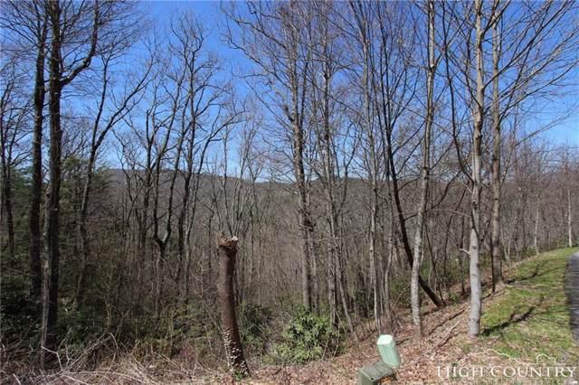 Tbd Kestrel Drive, Blowing Rock, NC 28605 (MLS #207147) :: Keller Williams Realty - Exurbia Real Estate Group