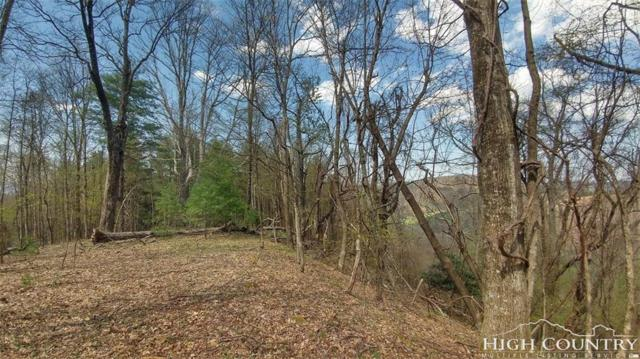 Lot 19 Big Ridge Road, Fleetwood, NC 28626 (MLS #207282) :: Keller Williams Realty - Exurbia Real Estate Group