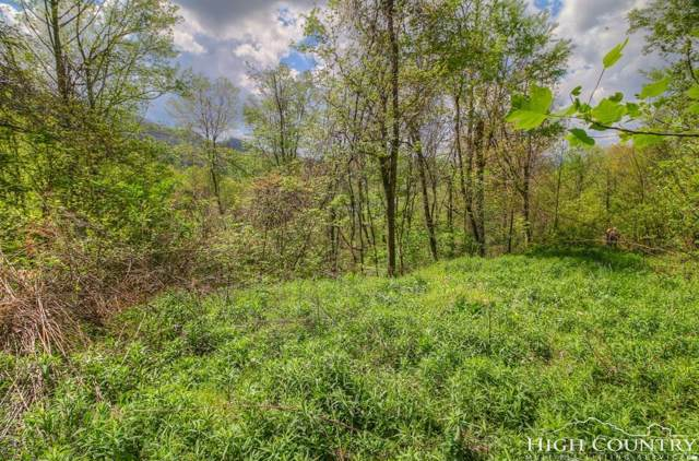 Lot 8 Yasmine Lane, Vilas, NC 28692 (MLS #207285) :: Keller Williams Realty - Exurbia Real Estate Group