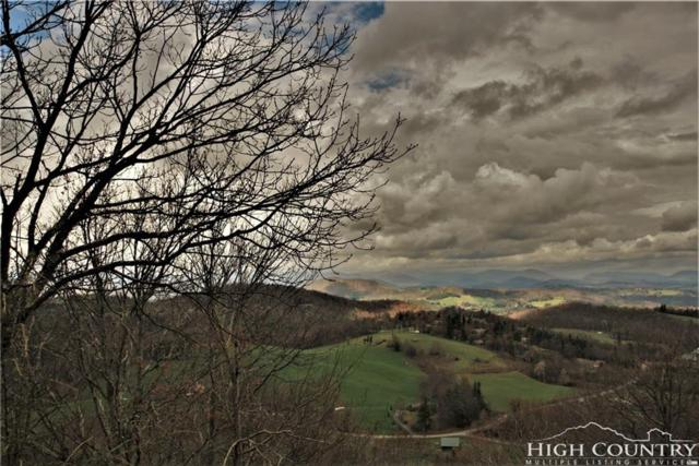 TBD High Peak Lane Lane, Boone, NC 28607 (MLS #207293) :: Keller Williams Realty - Exurbia Real Estate Group