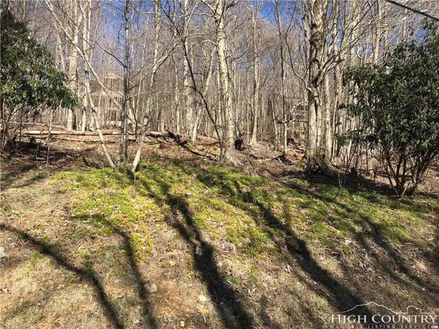 265 Greenbriar Road, Beech Mountain, NC 28604 (MLS #207371) :: RE/MAX Impact Realty