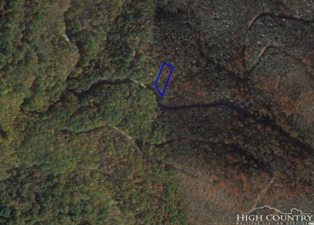 XX Buckeye Creek Road, Beech Mountain, NC 28604 (MLS #207385) :: RE/MAX Impact Realty
