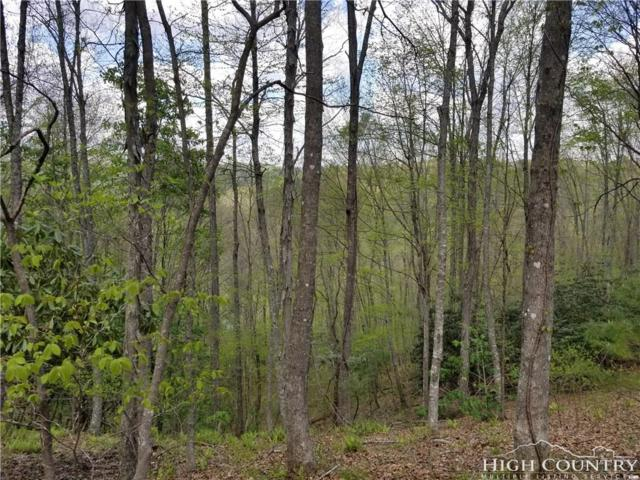 Lot 52 Stoney Brook Drive, Lansing, NC 28643 (MLS #207390) :: Keller Williams Realty - Exurbia Real Estate Group