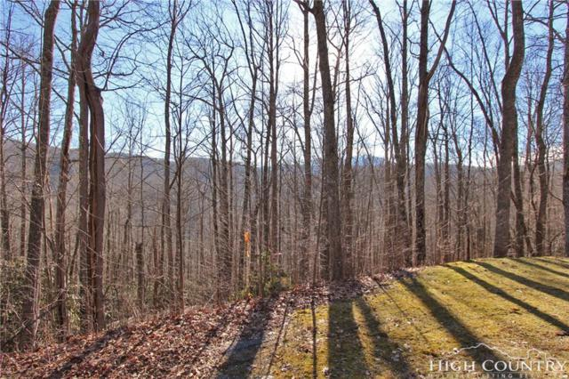 Lot 328A Twin Rivers Drive, Boone, NC 28607 (MLS #207407) :: Keller Williams Realty - Exurbia Real Estate Group
