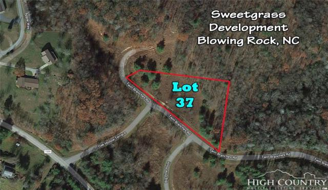 Lot 37 Twin Branches Road, Blowing Rock, NC 28605 (MLS #207604) :: Keller Williams Realty - Exurbia Real Estate Group