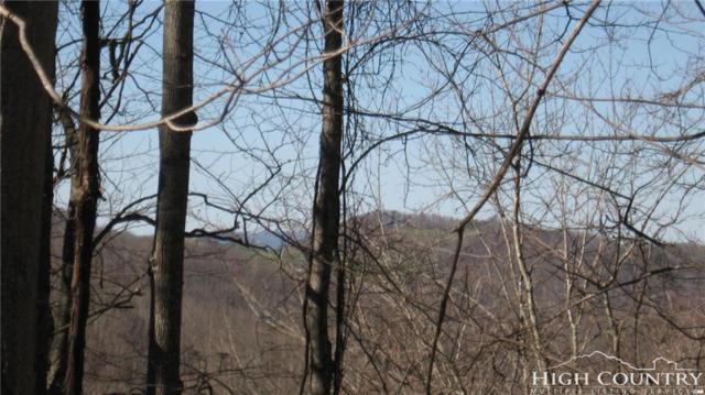 121 Deergrass Road Road, Beech Mountain, NC 28604 (MLS #207666) :: RE/MAX Impact Realty