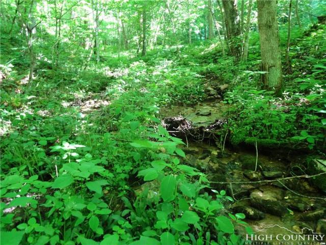 Lot 50 Paradise Valley Road, Creston, NC 28615 (MLS #207689) :: RE/MAX Impact Realty