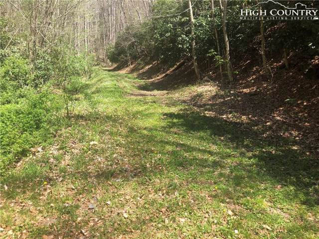 lot 64 Carefree Cove Road, Zionville, NC 28698 (MLS #207925) :: RE/MAX Impact Realty