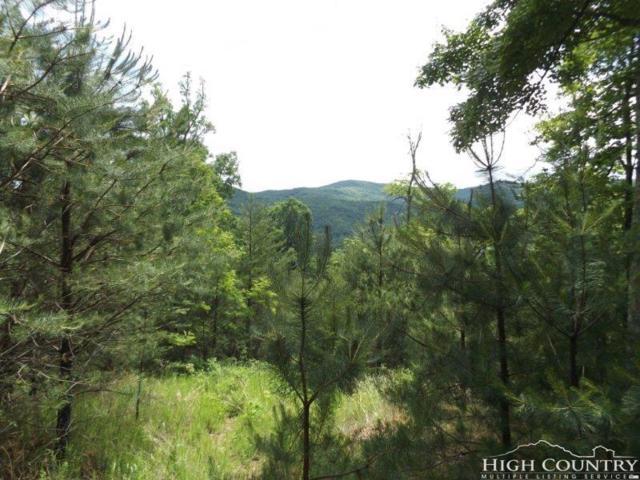 76 Elk Ridge, Ferguson, NC 28624 (MLS #208043) :: Keller Williams Realty - Exurbia Real Estate Group