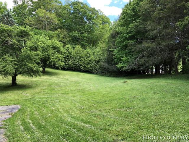 196 Hanging Rock Estates Lane Lot 11, Banner Elk, NC 28604 (MLS #208054) :: Keller Williams Realty - Exurbia Real Estate Group