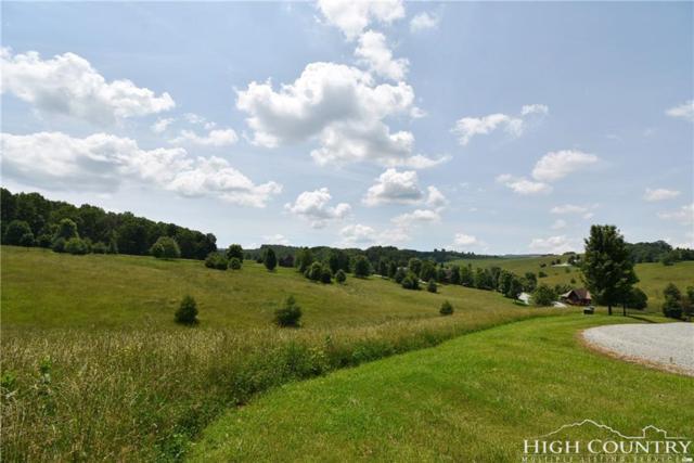 30 Pond View Lane, Piney Creek, NC 28675 (MLS #208092) :: RE/MAX Impact Realty