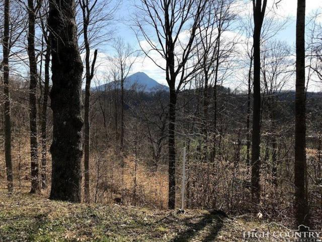 TBD Peak Mountain Edge Road, Creston, NC 28615 (MLS #208230) :: Keller Williams Realty - Exurbia Real Estate Group