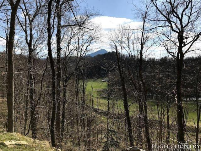 TBD Peak Mountain Edge Road, Creston, NC 28615 (MLS #208236) :: Keller Williams Realty - Exurbia Real Estate Group