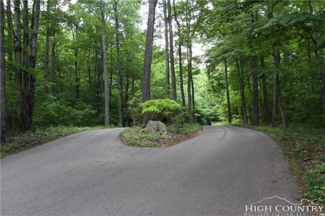 TBD Little Tree Road, West Jefferson, NC 28694 (MLS #208282) :: RE/MAX Impact Realty