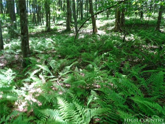 Lot 1 Greenview Drive, Jefferson, NC 28640 (MLS #208403) :: Keller Williams Realty - Exurbia Real Estate Group