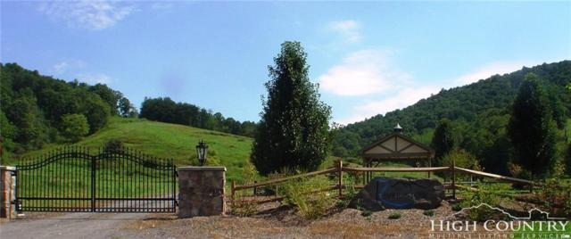 TBD Riverstone Lane, Laurel Springs, NC 28644 (MLS #208425) :: RE/MAX Impact Realty