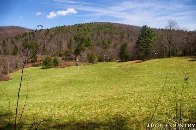 Lot 25 Rhododendron Run, Fleetwood, NC 28626 (MLS #208522) :: Keller Williams Realty - Exurbia Real Estate Group