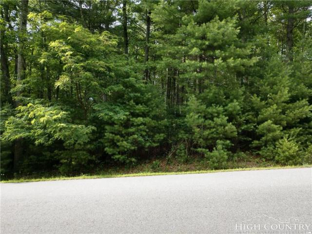 TBD Greenview Drive Lot 10, Jefferson, NC 28640 (MLS #208549) :: Keller Williams Realty - Exurbia Real Estate Group