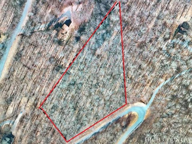 10 Meadow Avenue, Banner Elk, NC 28604 (MLS #208785) :: Keller Williams Realty - Exurbia Real Estate Group