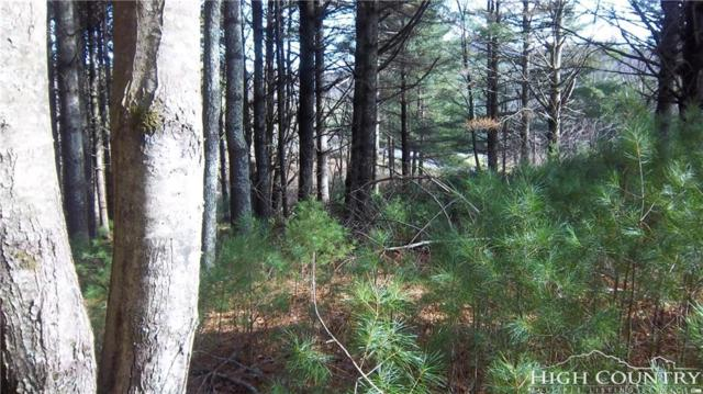 TBD Lot 29 & 30 Fox Crest Overlook, Jefferson, NC 28640 (MLS #208794) :: Keller Williams Realty - Exurbia Real Estate Group