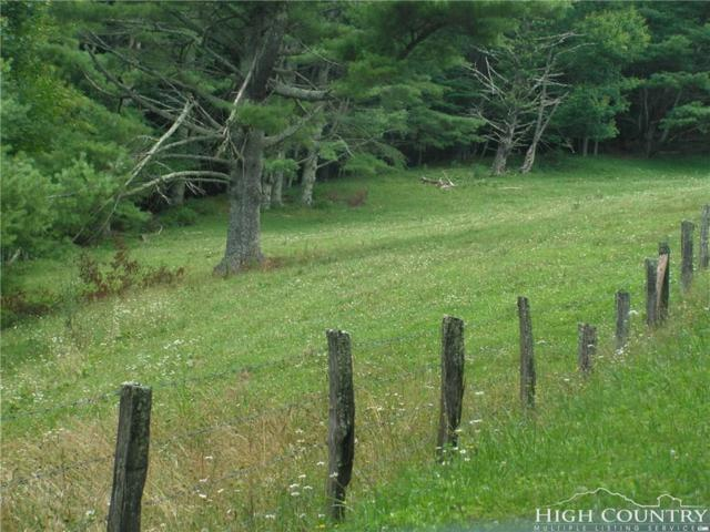 tbd Sleepy Valley Drive, Boone, NC 28607 (MLS #209023) :: Keller Williams Realty - Exurbia Real Estate Group
