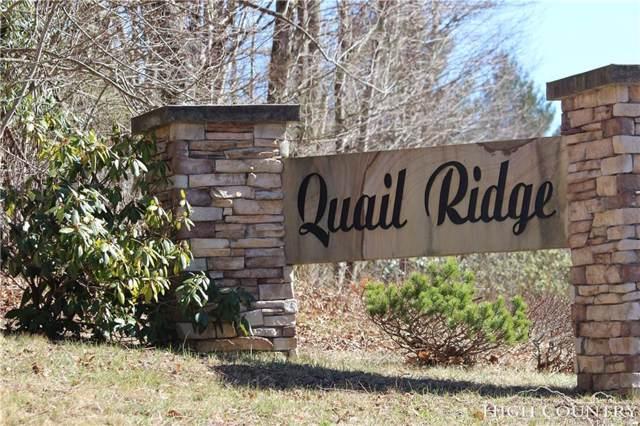 00 Quail Ridge, Fleetwood, NC 28626 (MLS #209034) :: RE/MAX Impact Realty