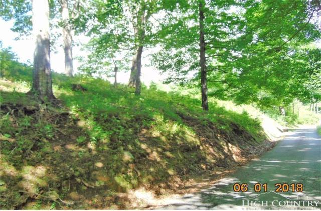 374 Bower Lane, Jefferson, NC 28640 (MLS #209089) :: Keller Williams Realty - Exurbia Real Estate Group
