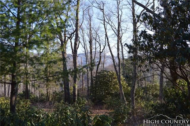 Lot #2 Blair Mountain Estates, Seven Devils, NC 28604 (MLS #209154) :: RE/MAX Impact Realty