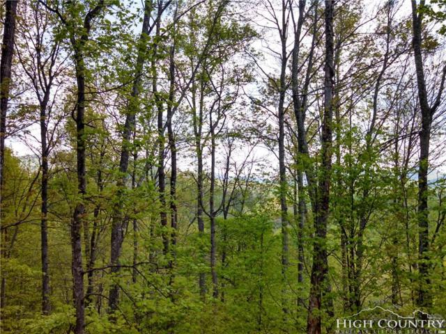Lot 8 Cielo Road, Blowing Rock, NC 28605 (MLS #209165) :: Keller Williams Realty - Exurbia Real Estate Group