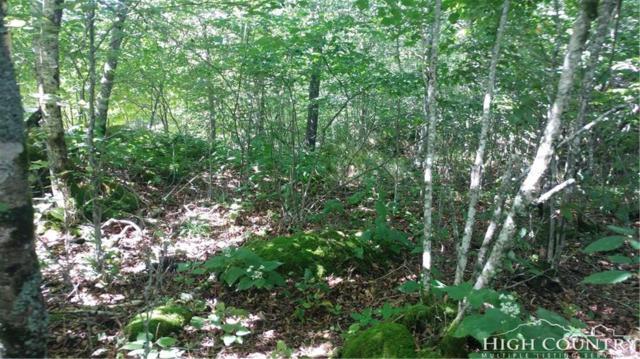 327 N Pinnacle Ridge Road, Beech Mountain, NC 28604 (MLS #209211) :: RE/MAX Impact Realty
