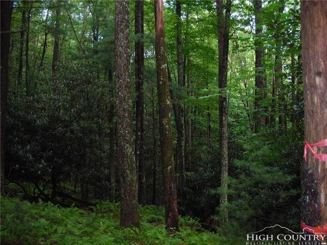 TBD Green Mountain Lot 39 Road, Sparta, NC 28675 (MLS #209276) :: RE/MAX Impact Realty