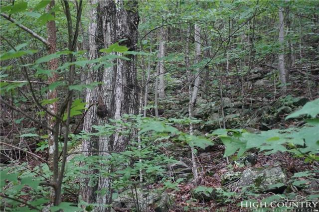 TBD Abbie Trail, West Jefferson, NC 28694 (MLS #209353) :: RE/MAX Impact Realty