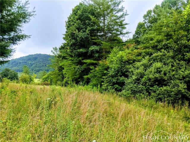 tbd Laurel Mountain Drive, Sparta, NC 28675 (MLS #209472) :: RE/MAX Impact Realty
