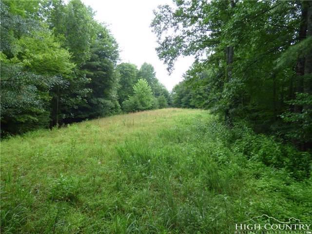 Lot 4 Running Cedar Lane, Crumpler, NC 28617 (MLS #209545) :: Keller Williams Realty - Exurbia Real Estate Group