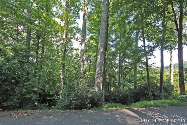 Lot 84 Quail Roost Drive, Boone, NC 28607 (MLS #209609) :: Keller Williams Realty - Exurbia Real Estate Group