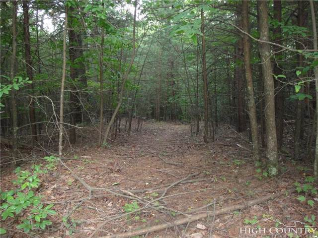 Lot 21 Buck Mountain Road, Purlear, NC 28697 (MLS #209652) :: Keller Williams Realty - Exurbia Real Estate Group