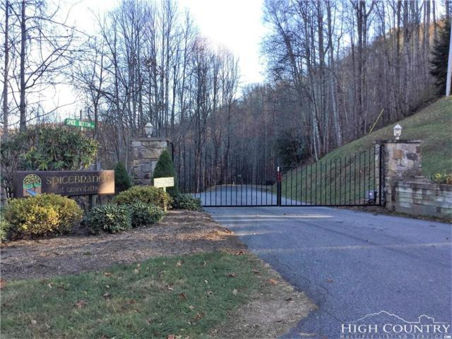 Tbd Spice Bottom Trail, Banner Elk, NC 28604 (MLS #209694) :: RE/MAX Impact Realty