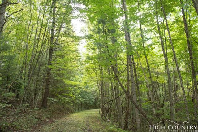 TBD Crestview East Drive, Creston, NC 28615 (MLS #209769) :: RE/MAX Impact Realty