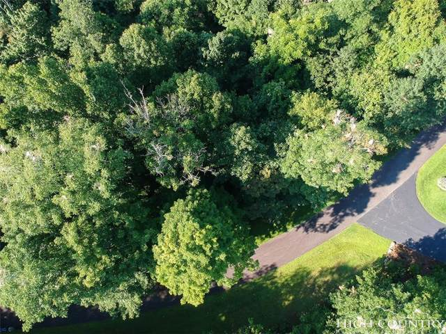 Lot 5 Grace Mountain Road, Todd, NC 28684 (MLS #209826) :: RE/MAX Impact Realty