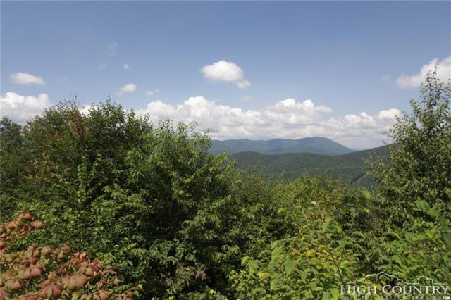 TBD Pinnacle Drive, West Jefferson, NC 28694 (MLS #209835) :: RE/MAX Impact Realty