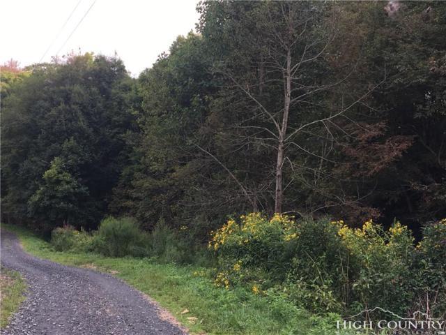 Tbd W Crestview Drive, Creston, NC 28615 (MLS #209956) :: RE/MAX Impact Realty