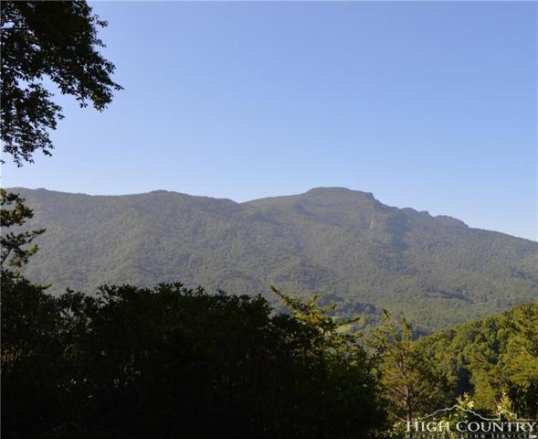 Lot 6R Blair Mountain Estates, Seven Devils, NC 28604 (MLS #209974) :: Keller Williams Realty - Exurbia Real Estate Group