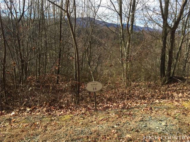 Lot 14 Lake View Drive, Elk Park, NC 28622 (MLS #210227) :: RE/MAX Impact Realty