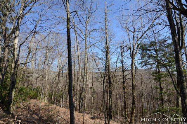 631 Rock Ledge Lane, Linville, NC 28646 (MLS #210311) :: Keller Williams Realty - Exurbia Real Estate Group