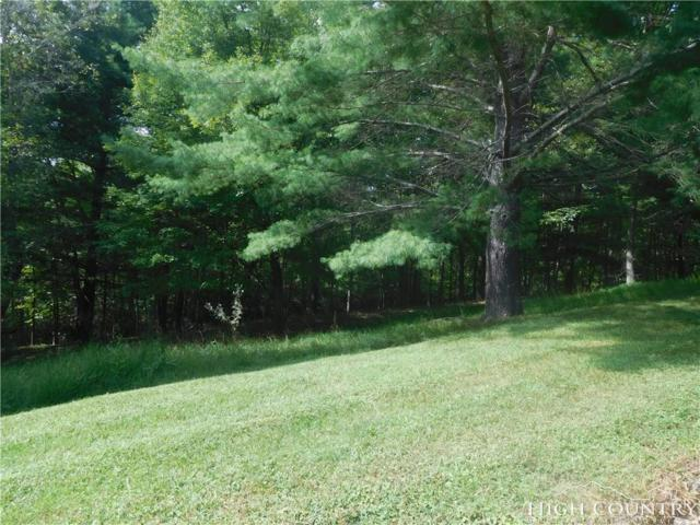TBD Tranquility Lane #51, Piney Creek, NC 28663 (MLS #210341) :: Keller Williams Realty - Exurbia Real Estate Group