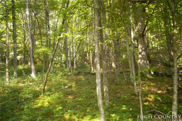 TBD Lot 47 Wild Turkey Trail Road, Fleetwood, NC 28626 (MLS #210410) :: Keller Williams Realty - Exurbia Real Estate Group