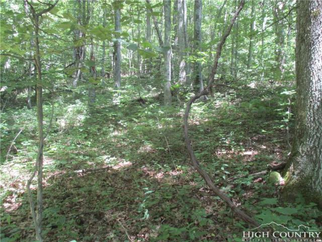 TBD Lot 47 A Wild Turkey Trail, Fleetwood, NC 28626 (MLS #210411) :: Keller Williams Realty - Exurbia Real Estate Group