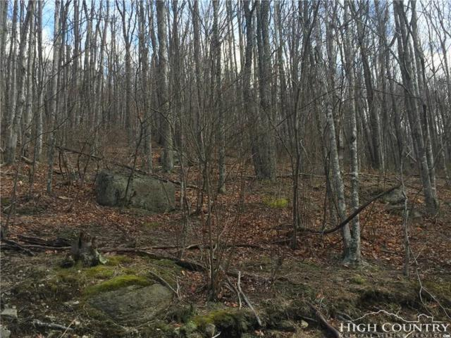 106 Hoot Owl Lane, Beech Mountain, NC 28604 (MLS #210421) :: RE/MAX Impact Realty