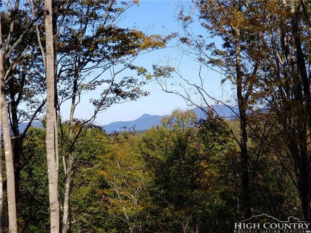ES7 Eagle Springs Trail, Banner Elk, NC 28604 (MLS #210527) :: Keller Williams Realty - Exurbia Real Estate Group